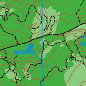Dash Point orienteering map sample