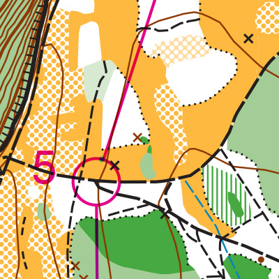 Lincoln Park orienteering map sample