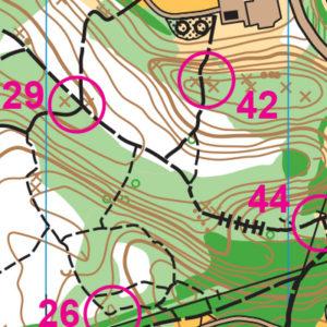 Lynndale Park orienteering map sample