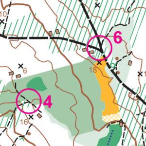NAD Soroptimist orienteering map preview