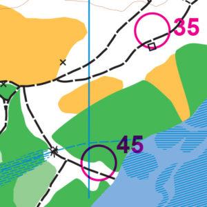 Beaver Lake orienteering map sample