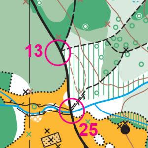 Farrel-McWhirter orienteering map sample