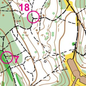 Hamlin Park orienteering map sample