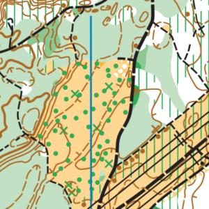 Lincoln Tree Farm orienteering map sample